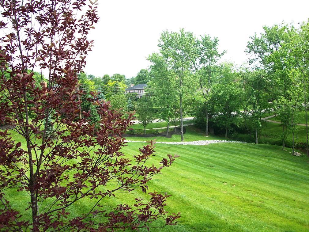 Landscape maintenance cru cutters llc for Landscape maintenance